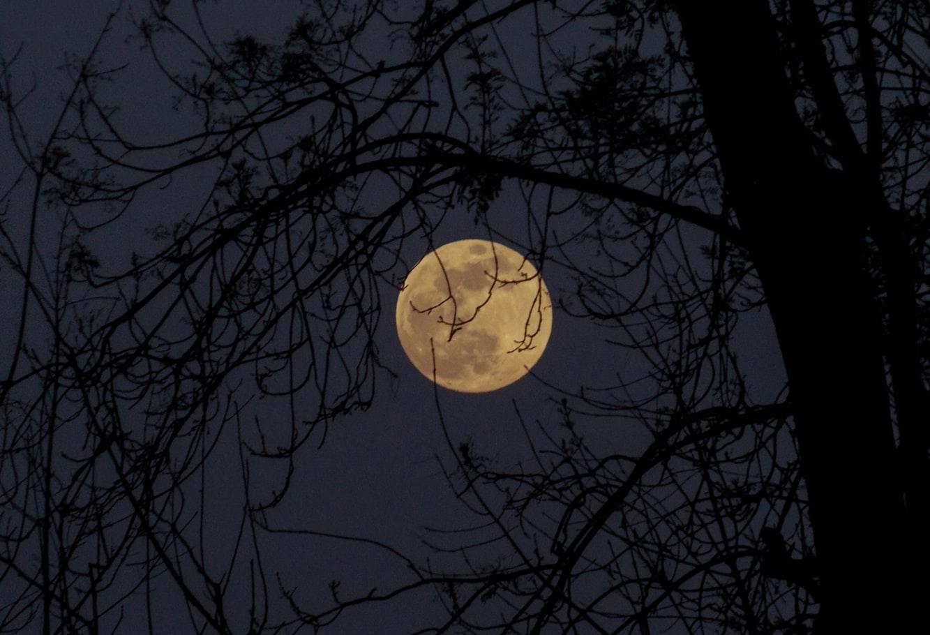 Какой сегодня, 14 февраля, лунный день