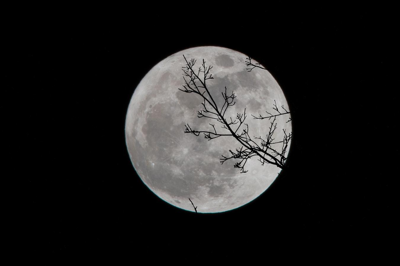 Какой сегодня, 13 февраля, лунный день