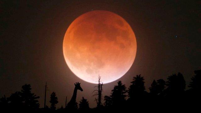 Какой сегодня, 16 мая, лунный день