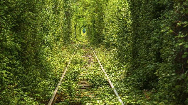 Тунель коханя