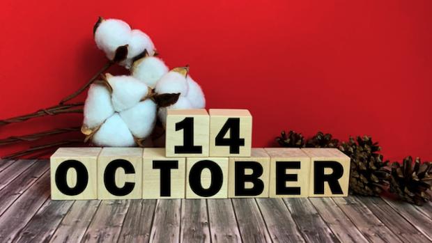 День захисників і захисниць України: яке свято 14 жовтня